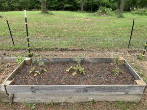 raised bed soil test
