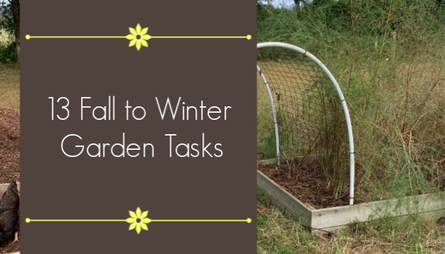 13 Fall to Winter Garden Tasks