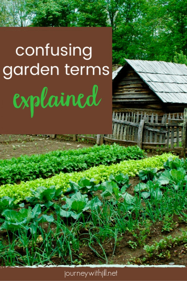 Beginning gardeners have a big learning curve. There are so many new gardening terms to learn! This list is some of the most confusing or misunderstood. #gardening #gardenterms #beginninggardener