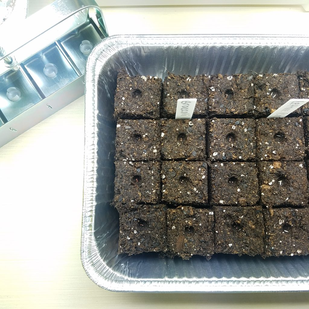 soil-block-tray