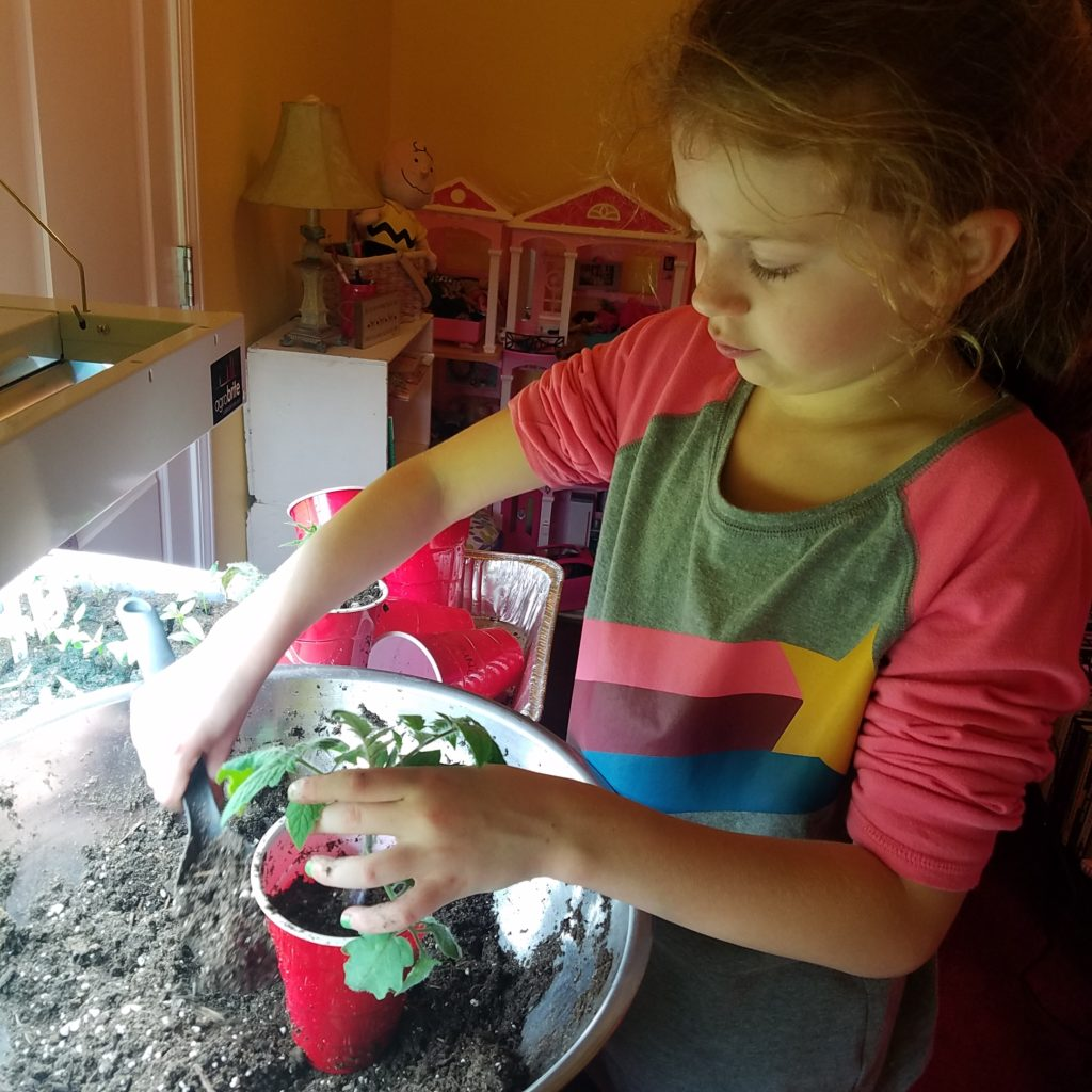 girl transplanting seedlings
