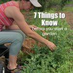 7 Things to Know Before You Start a Garden