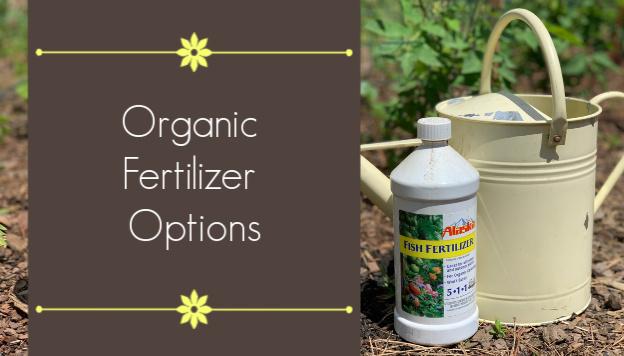 Organic Fertilizer Options