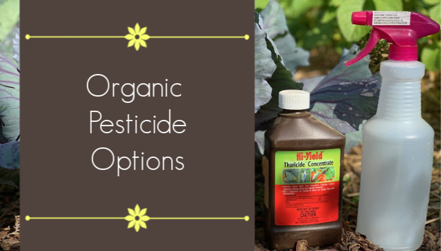 7 Organic Pesticides and their Uses