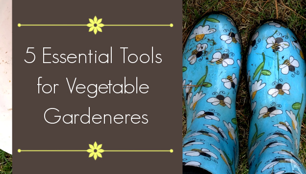 5 Essential Tools for Vegetable Gardeners