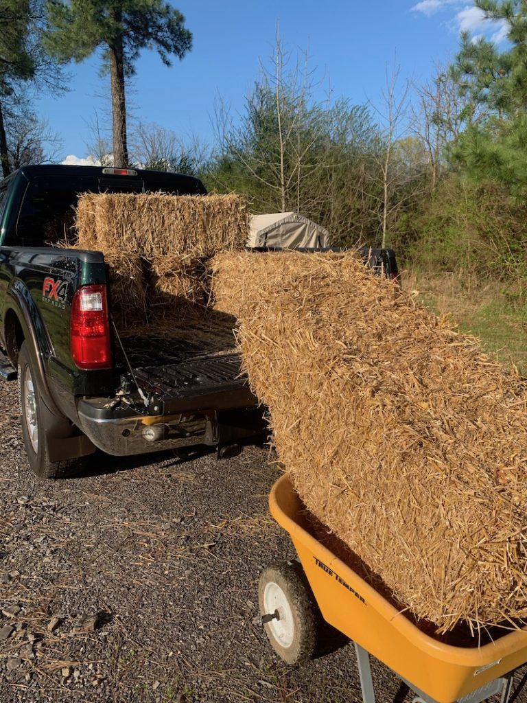 Straw Bales coming off of truck