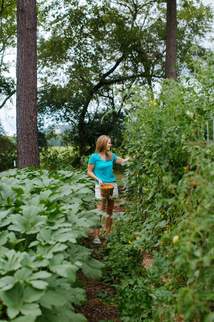 woman harvesting crops in garden