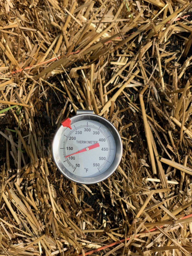 Checking temperature of straw bale