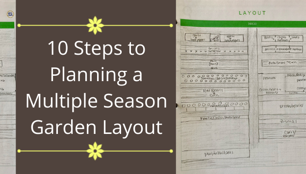 10 Steps to Planning a Multiple Season Garden Layout