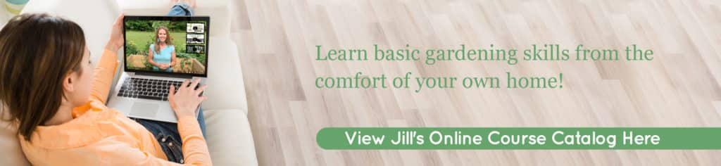 The Beginner's Garden View Online Courses