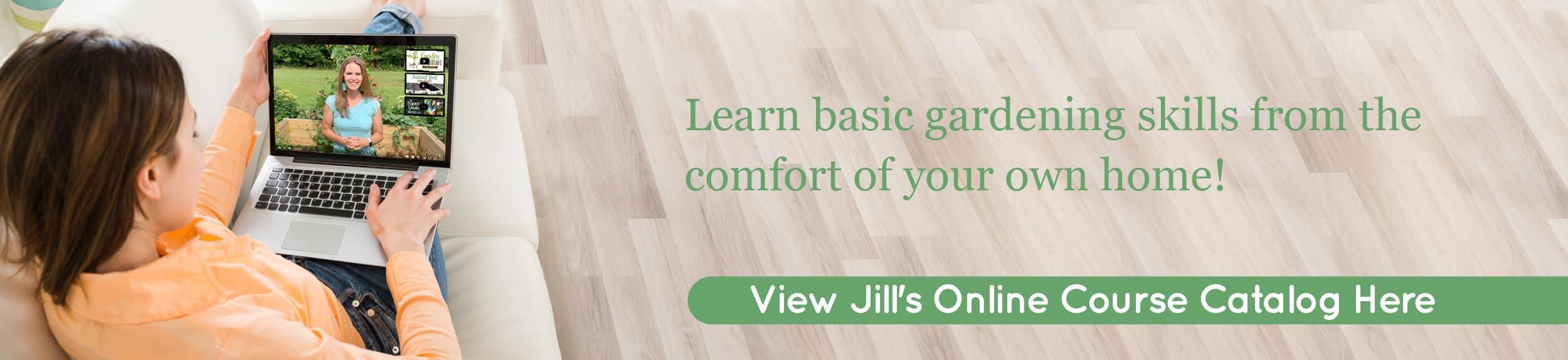 Jill McSheehy View Online Courses