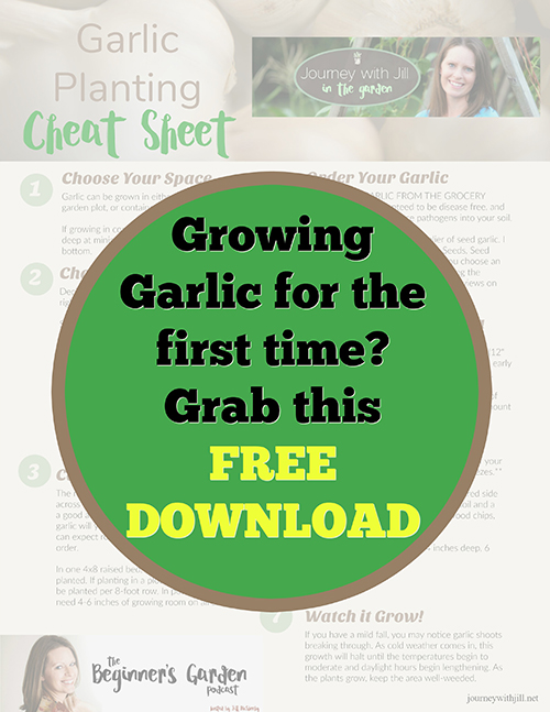 Growing Garlic for the first time? Grab this free download!