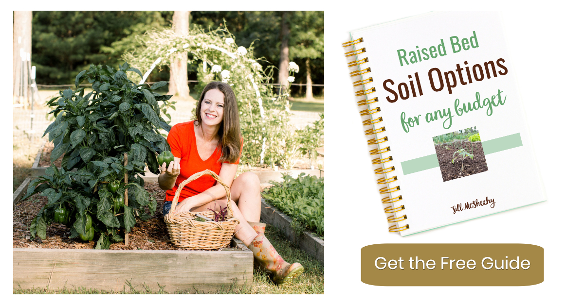 Raised Bed Soil Options for any budget by Jill McSheehy with Journey with Jill