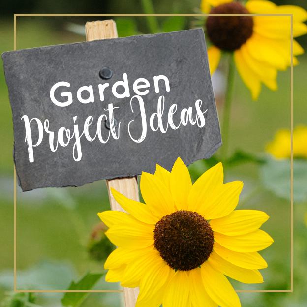 Garden Project Ideas - Journey with Jill