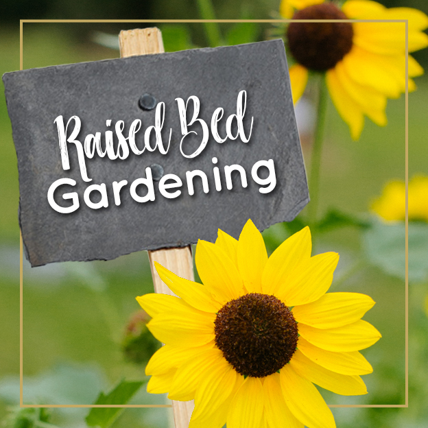Raised Bed Gardening - Journey with Jill