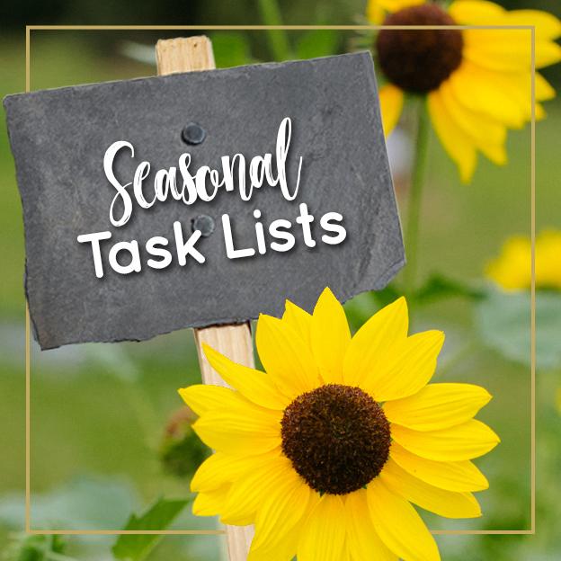 Seasonal Task Lists - Journey with Jill