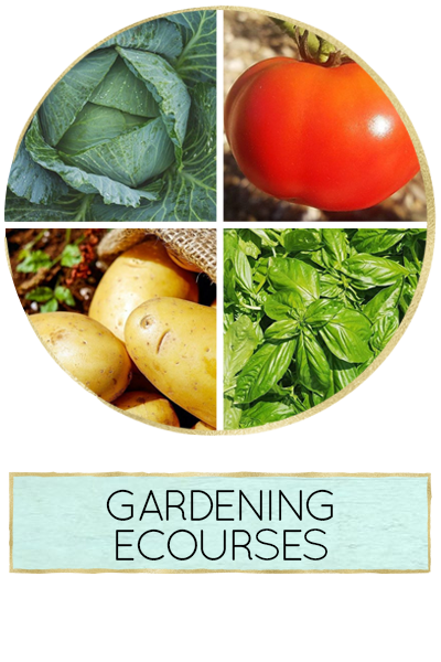 The Beginner's Garden : Gardening Ecourses