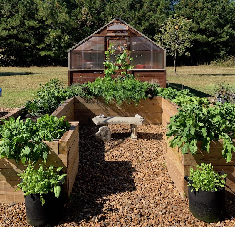 Greenhouse, raised bed, and grow bags full of vegetables.