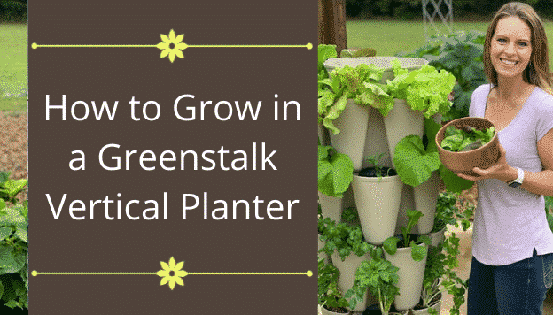 How to Grow in a Greenstalk Vertical Planter
