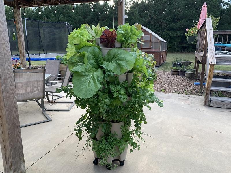 Greenstalk Vertical Planter full of lush vegetables
