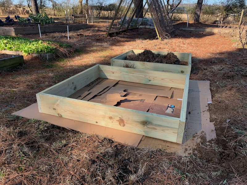 raised bed lined with cardboard