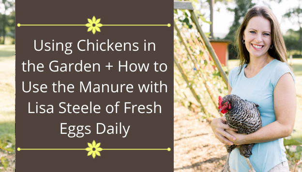 Gardening with Chickens: How to Use Your Flock for Manure, Natural Tilling, Pest Control, and More