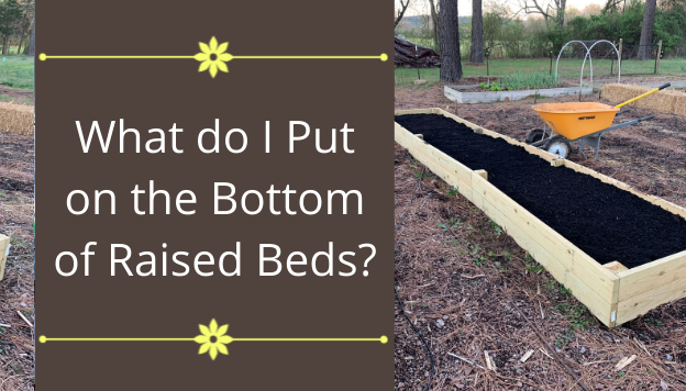 What do I Put on the Bottom of Raised Beds?