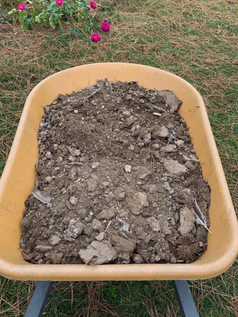 chicken manure compost in wheelbarrow