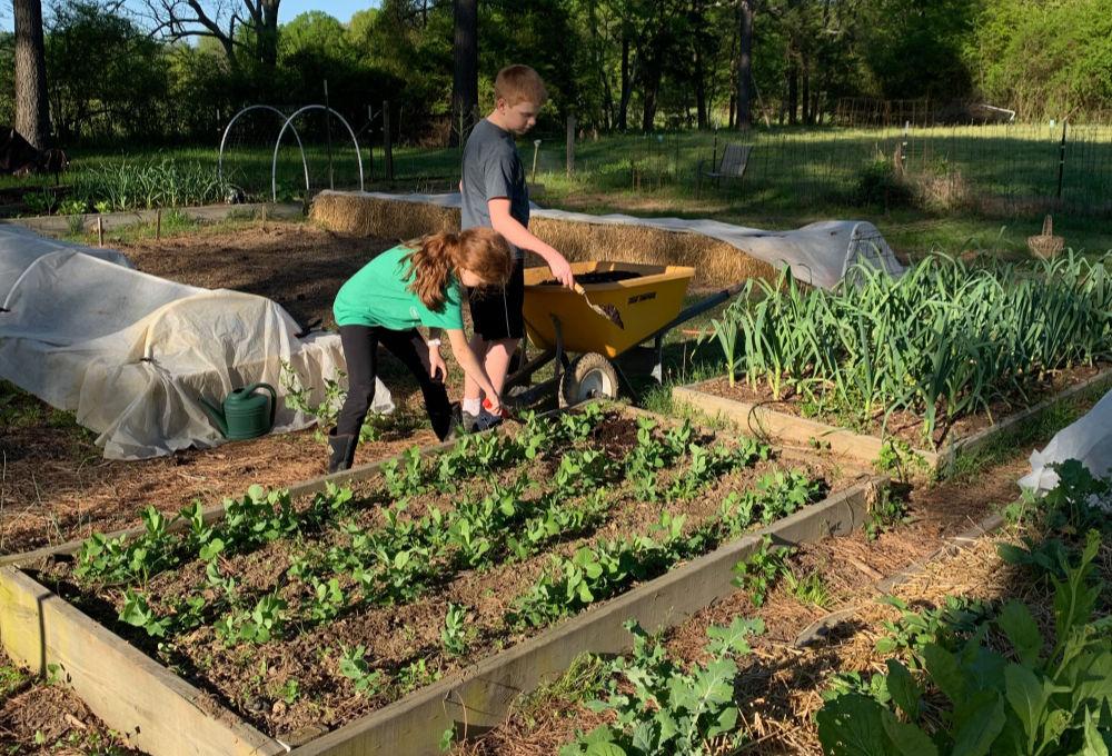 bambini che applicano il pacciame al giardino